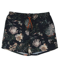 Only & Sons Tino Swimshorts Navy